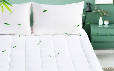 From $29 for Shangri-La 1000GSM 5-Star Bamboo Mattress Topper (Don't pay up to $269)