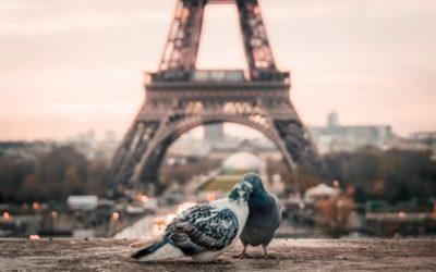 Paris : chambre Queen Standard en 3* avec petit-déjeuner pour 2 personnes à l'Ibis Styles Paris Boulogne Marcel Sembat