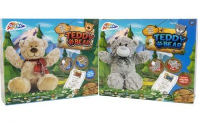One or Two Build A Teddy Bear Kits
