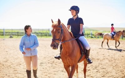 One-Hour Riding Lesson for Up to Five at Wicklow Equitours (Up to 21% Off*)
